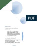 Reporte de Practica Analitca