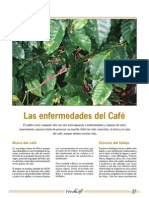 plagas y enfermedades.pdf