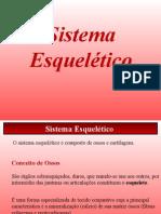 SISTEMA E..