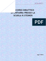 Programma Steiner