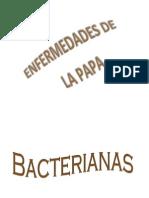 Marchitez bacteriana