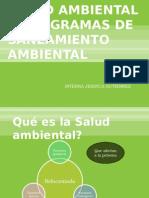programasdesaneamientoambiental-090731192806-phpapp01