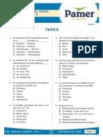 HP_S3_Incas (1).pdf