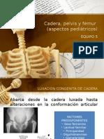 Cadera Pelvis y Femur Pediatricos