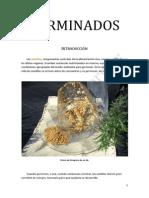 GERMINADOS (1)