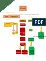 Mapa Conceptual-Soporte en Hardware