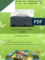 Presentacion ClaseDemostrativaCCNN 8EGB LA