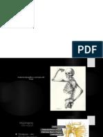 Seminario Anatomia Del Brazo