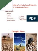 Abiotic Stress Resistance