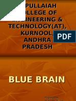 BLUE BRAIN b.ppt