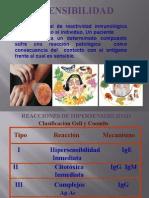 hipersensibilidad.pps
