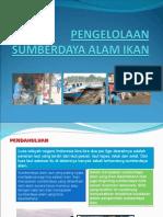 9-pengelolaan-sumberdaya-alam-ikan.ppt