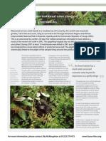 Fauna & Flora International Case Study-Silverbacks and Greenbacks