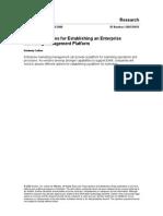 strategic_options_for_establ_139459[1].pdf