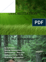 Final Deforestation Ppt