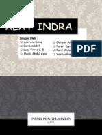 Alat Indra (Mata & Hidung)