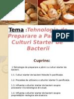 Culturi Starter de Bacterii