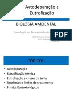 Autodepuração e Eutrofização AULA 11 2014