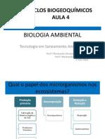 Ciclos Biogeoquímicos Aula4 2014