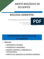 Tratamento Biologico 2 Aula 7 2014