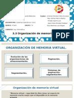 3.3 Organización de Memoria Virtual.