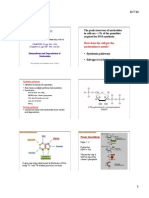 biosint nucleotidos