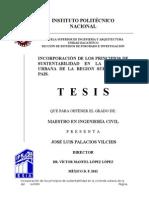 JOSE LUIS PALACIOS VILCHIS.docx