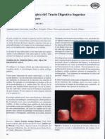 _Semiología Endoscópica Del Tracto Digestivo Superior - Importancia Para El Cirujano_0