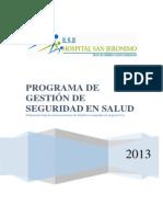 3. Programa de Gestion de Seguridad en Salud 2013