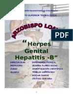 Herpes Genital-hepatitis b
