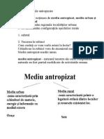 Subiectul.doc