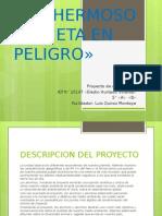 plantilla 2 - QUIROZ
