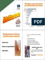 Infecciones Entéricas AVE2013