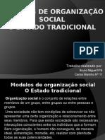 Modelos de Organização Social