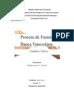 Proceso de Fusion. Banca Venezolana.