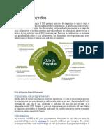 Ciclos de Proyectos Del BID