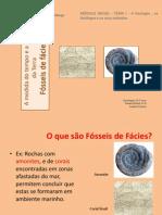 4- Fósseis de Fácies