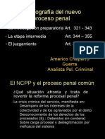 Estructura Del Nuevo Proceso Penal