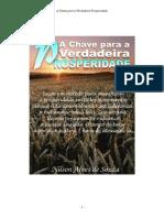 A Chave Para a Verdadeira Prosperidade Nilson Alves de Souza