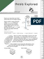photosynthesis.pdf