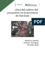 Pistachero. Analisis INTA EEA San Juan