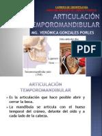 atm pdf
