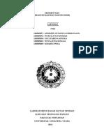 laporan SEDIMENTASI