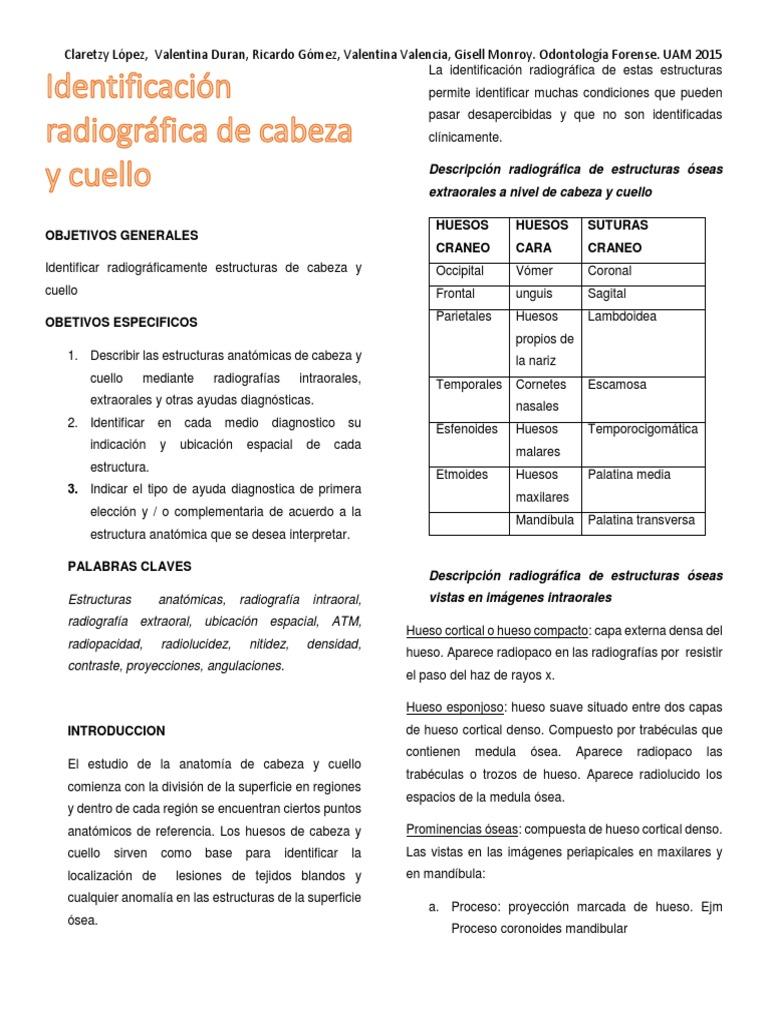 Plegable Paper Identificacion Radiografica de Cabeza y Cuello