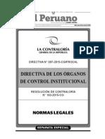 Directiva de Los Órganos de Control Institucional