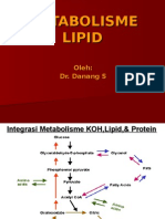 metabolisme-lipid