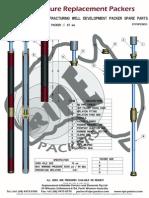 67 Open Hole Well / Bore Development Packer Straddle (1)