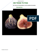 Introduction to Figs
