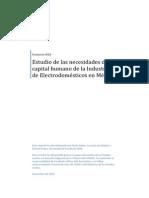 Estudio Necesidades Capitalhumano Industria Electrodomesticos Mexico