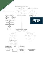 PATHWAYS Hiperbilirubinemia